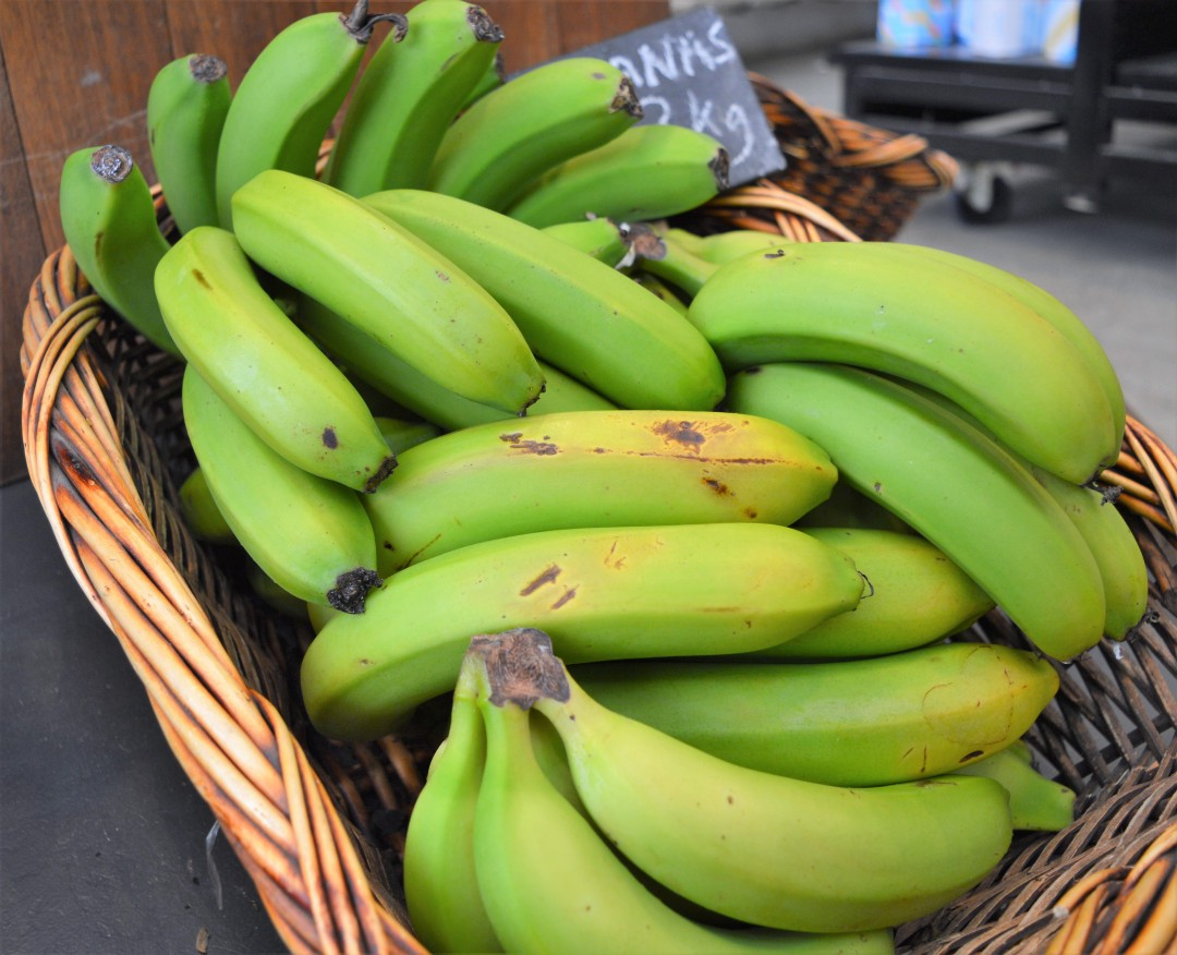 The Health Benefits of Resistant Starch
