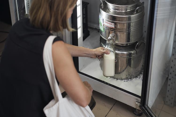 bulk milk churn